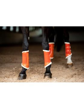 Guêtres Equestrian Stockholm - Orange