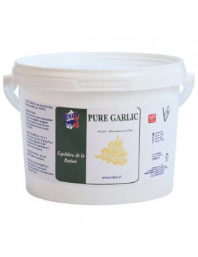 Pure Garlic Ail pur - REKOR