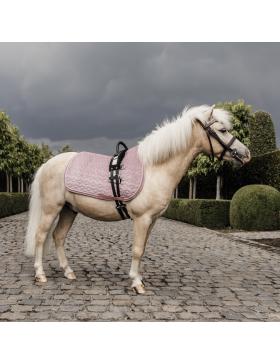 Tapis Velvet Pony - Kentucky