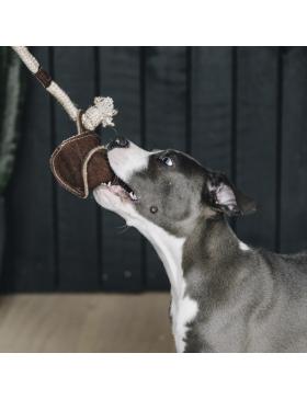 Jouet pour chien avec corde...