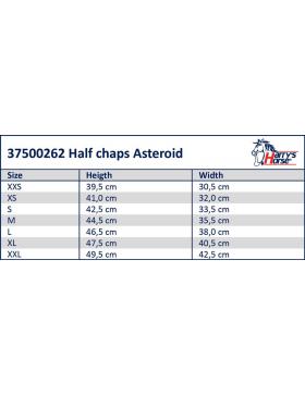 Mini-chaps Asteroid - HORKA